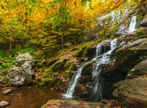 Early Fall Dark Hollow Falls - Shenandoah National Park
