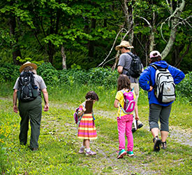 Kids Activities - Shenandoah National Park