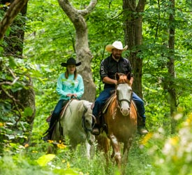 Horseback Riding from Skyland Stables in Shenandoah National Park