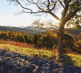 Thorton Hollow Overlook Sunrise - Shenandoah National Park